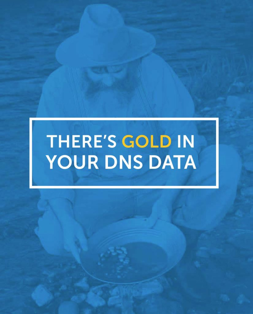 There's Gold in your DNS data